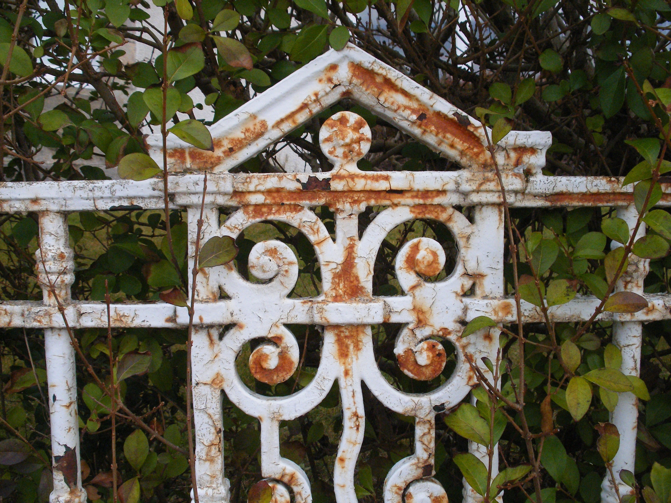 Gate in Findhorn